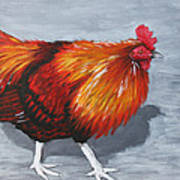 Bantam Rooster 2 Art Print
