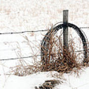 Barbed Wire Fence Post Art Print