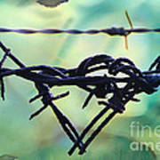 Barbed Wire Love-jealousy 2 Art Print