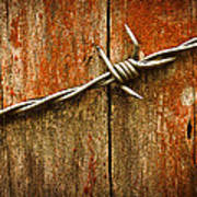 Barbed Wire On Wood Art Print