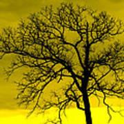 Bare Tree Against Yellow Background E88 Art Print