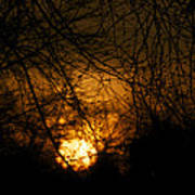 Bare Tree Branches With Winter Sunrise Art Print