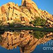 Barker Dam Pond Reflections Art Print