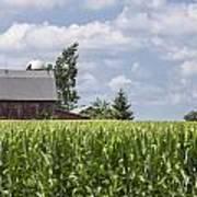 Barn And Corn Art Print