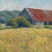 Barn In The Field Art Print