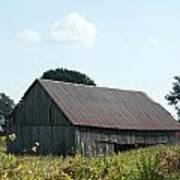 Barn In The Grass Art Print