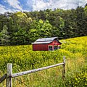 Barn In The Meadow Art Print