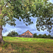 Barn Under A Tree. Art Print