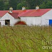 Barn With Blue Door Art Print by Art Block Collections