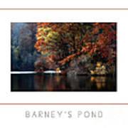 Barney's Pond Poster Art Print