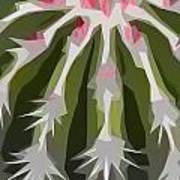 Barrel Cactus Collage Art Print