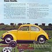 Basic Beetle  Art Print