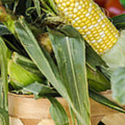 Basket Farmers Market Corn Art Print