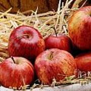 Basket Of Delicious Red Apples Art Print