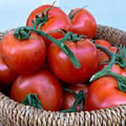 Basket Of Tomatoes  Art Print