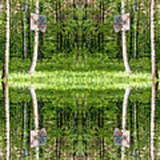 Basketball Forest Court Reflection 1 Art Print