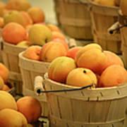 Baskets Of Apricots Art Print by Julie Palencia