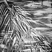 Bass On The Beach Print by Adriana Garces