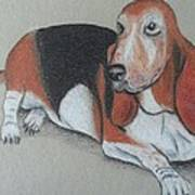 Bassett Puppy Art Print by Steve Jorde