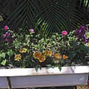 Bath Tub Flowers Art Print