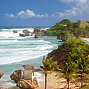 Bathsheba Beach Art Print