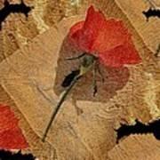 Bats And Roses Art Print