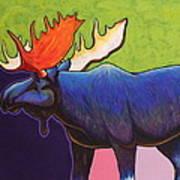 Battle Tested Bull Moose Art Print