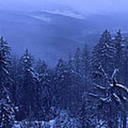 Bavarian Forest In Winter Art Print by Ulrich Kunst And Bettina Scheidulin