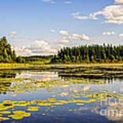 Bay At The Waskesiu Lake With Lily Art Print