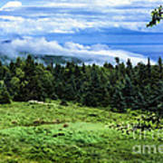 Bay Of Fundy From Fundy National Park Art Print