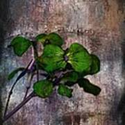 Be Green Art Print