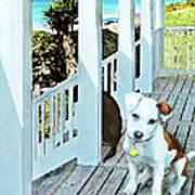Beach Dog 1 Art Print