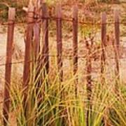 Beach Dune Fence At Cape May Nj Art Print