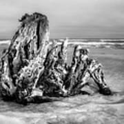 Beach Monster 2 - Outer Banks Bw Art Print