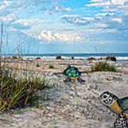Beach Pals Art Print by Betsy Knapp