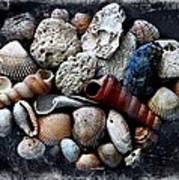 Beach Treasures Art Print