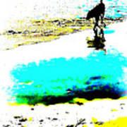Beachcomber Art Print by Brian D Meredith