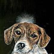 Beagle Angel Art Print by Jay  Schmetz