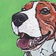 Beagle Timo Art Print