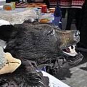 Bear Skins For Sale Art Print