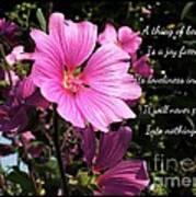 Beautiful Blossom 2 Art Print