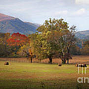 Beautiful Cades Cove Art Print by Lena Auxier