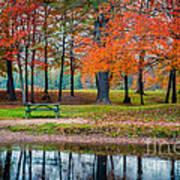 Beautiful Fall Foliage In New Hampshire Art Print