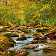 Beautiful Fall View In Tennessee Art Print