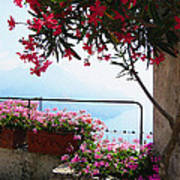 Beautiful Flowers Of Ravello Italy Art Print