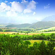 Beautiful Greens Landscape Print by Boon Mee