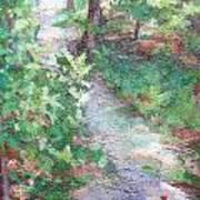 Beautiful Hike Art Print