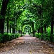 Beautiful Park At Schonbrunn Palace In Vienna Austria Art Print
