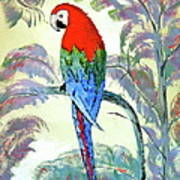 Beautiful Parrot For Someone Special Art Print