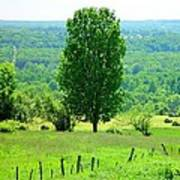 Beautiful Pennsylvania Summer Scene - Colorful Landscape - Painting Like Art Print